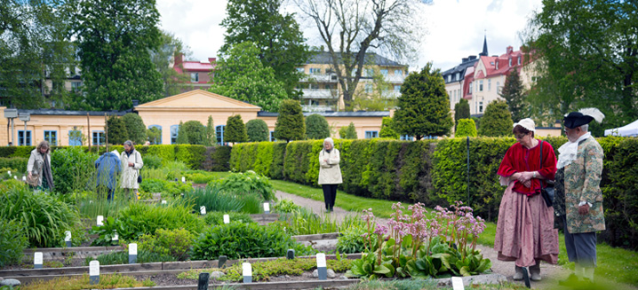 Programme for the Linnaeus garden party - Linnaeus\' UppsalaLinnaeus ...
